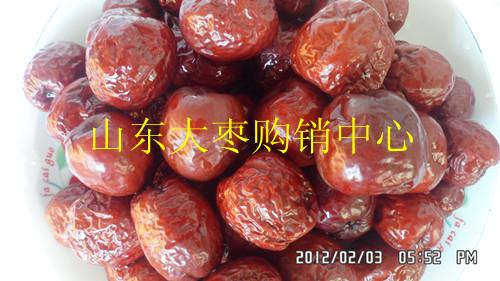 批发山东大枣 山东大红枣图片