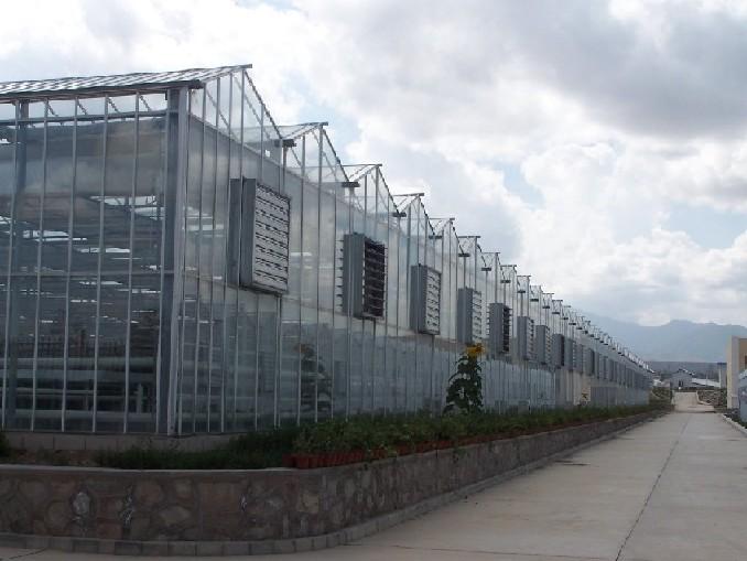 产品介绍厦门黑土玻璃温室源于早期引进的荷兰VENLO温室,由于荷兰属于寡日照地区,对透光要求高,因此,玻璃的高透光性非常适合于高光作物的种植。 玻璃温室是以玻璃作为覆盖材料的一种温室,主要分为双坡面温室和Venlo型温室。双坡面温室操作空间大,便于机械化作业;而且其采光面积大,室内光照均匀;占地面积大,地面利用率高。门式钢架结构的玻璃温室,主体结构采用热浸镀锌表面防腐,单位面积用钢量小。但双坡面玻璃到保温比小,散热面积多,在冬季特别是在严寒地区因其采暖负荷大,所以,运行成本高.