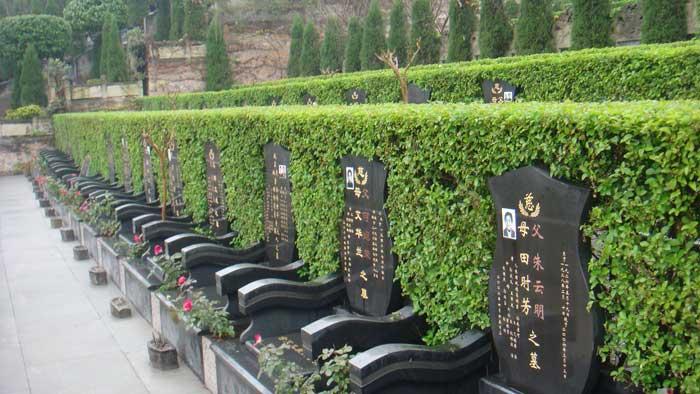 灵安陵园是经风水专家选位,定向后动土兴建的.图片