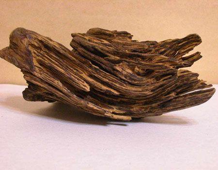 珍贵品种沉香木鉴定拍卖去哪里最贵价格哪里好