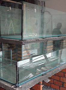 供应苏州海鲜池报价 苏州海鲜池图片