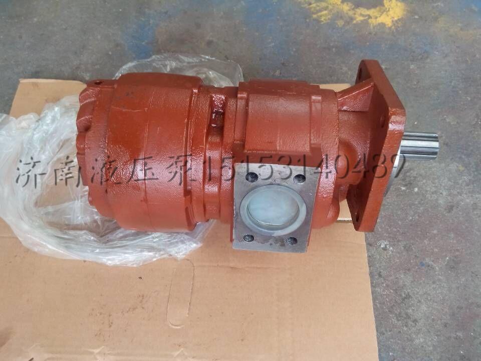 供应常林机械专用液压齿轮泵cbgj2063/1016|泉城牌泵图片