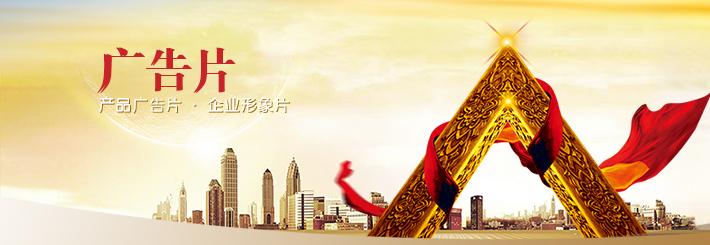 芜湖市种子广告专题片微电影三维动画制作公司及价格