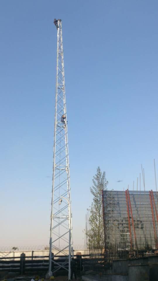 供应gfw避雷塔-衡水跃华钢结构有限公司