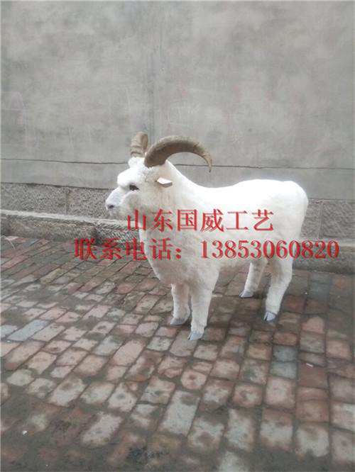 仿真绵羊模型玩具-山东仿真动物模型有限公司