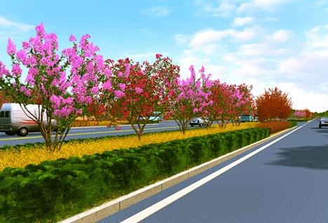 绿化效果图道路公路