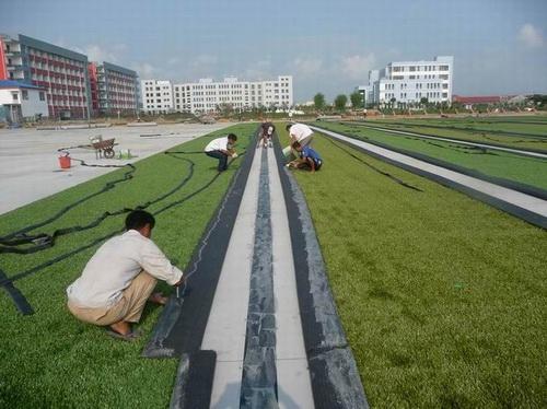 供应青岛人造草坪 铺装 人造 草皮 价格 人造草坪 高清图片