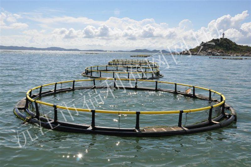 深水网箱养殖技术的七个关键点 淡水养殖(水产养殖百科) 水产养殖网