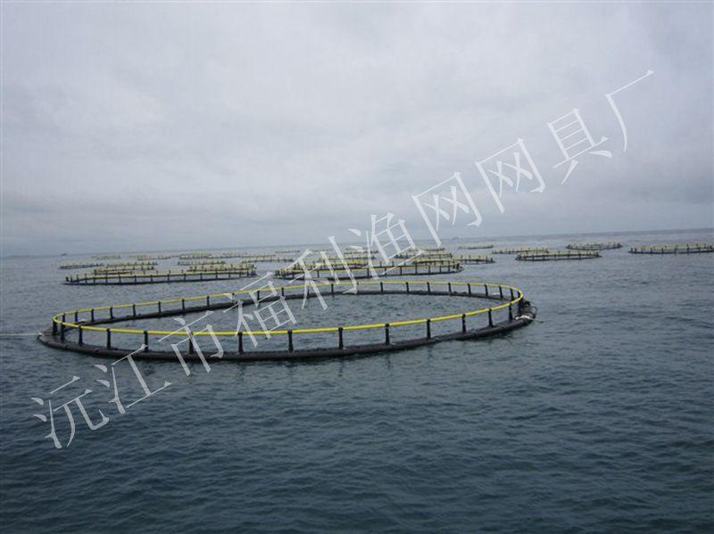 深水网箱养殖