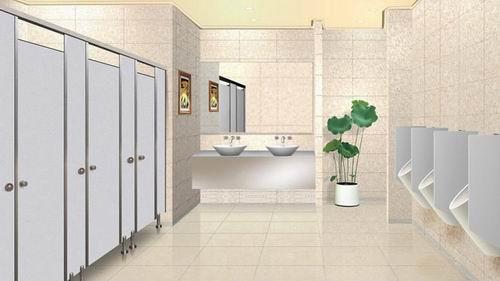 专注卫生间隔断小卫生间隔断图片6