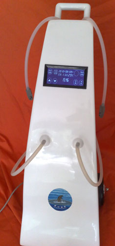 成都床单位臭氧消毒机厂家直销(双床消毒)病床专用床