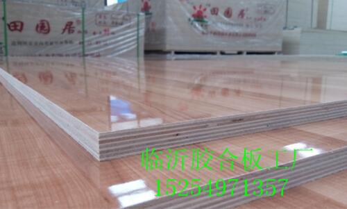 产品大全 建筑,建材 木材板材      山东 马六甲 木工板 临沂 生态板