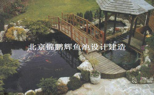 供应锦鲤鱼池设计建造