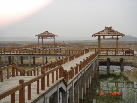 中国四川成都市成华区熊猫大道北门富森美家具 -仿古工程建筑高清图片